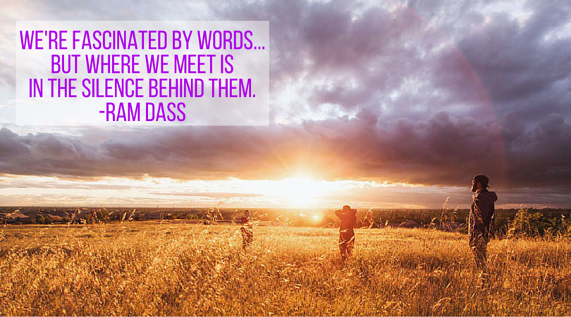 We're fascinated by words...but where we meet isin the silence behind them.-ram dass(2)